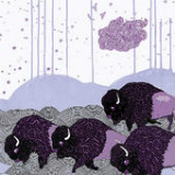 Plains of the Purple Buffalo Lyrics *Shels