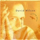 Turning Point Lyrics David Wilcox