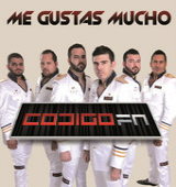 Me Gustas Mucho (Single) Lyrics Codigo FN
