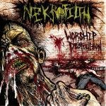 Worship Destruction Lyrics Nekrofilth