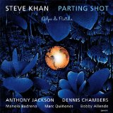 Parting Shot Lyrics Steve Khan
