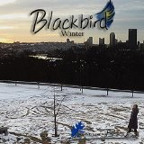 Blackbird Lyrics Emily Plazek